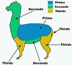 alpaca fiber grades