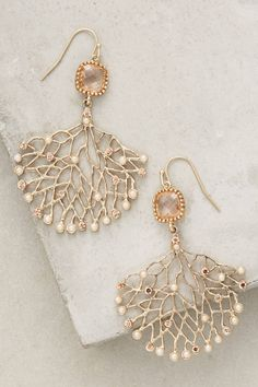 Natural Wonder Earrings