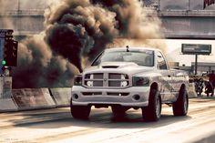 World Leader in Diesel Performance