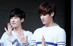 Wonwoo & Mingyu pt.6 #gwiyomi