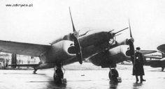 PZL.38 Wilk