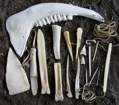 An assortment of tools carved from bone by Nehawka Primitive Skills