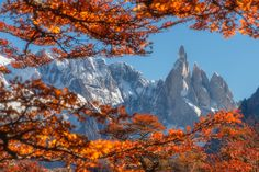 A shot from the hike up to the base camp through the autumnal coloured forest below Cerro Torre Mountain South America. By Shaun Young. [1600 X 1067]