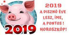 2019 a disznó éve lesz, íme, a pontos horoszkóp! - Ketkes.com