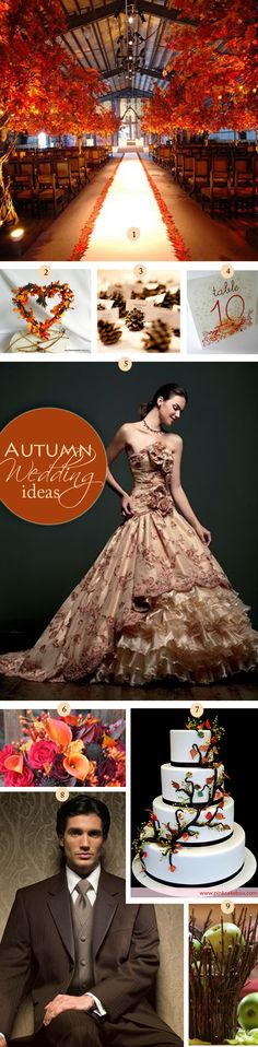 Thanksgiving Wedding Ideas with beautiful autumn colours. Find out where you can get all these ideas from.
