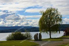 Radolfzell Park