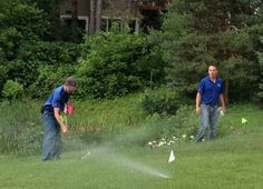 11 ways to use less water on your lawn from Minnesota Public Radio.