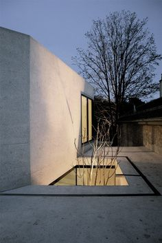 Small patio with tree. Maison a Frontenex by Charles Pictet.