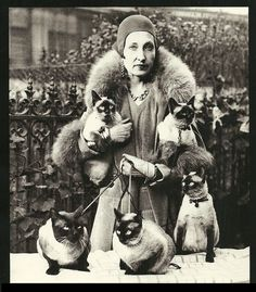 Large Black and White Cat Poster Cat Lady Paris by HowlMountain, $25.00