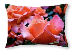 Orange-Pink Roses  Throw Pillow ~ beautiful orange-pink roses in Queen Mary's Gardens, Regent's Park, London, UK.  Decorative throw pillows available in multiple sizes.   www.ronablack.com