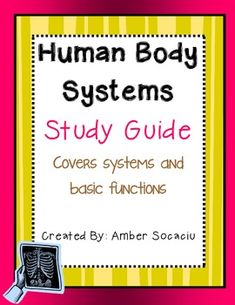 Human Body Systems Study Guide Freebie