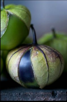 astonishing-moments: Tomatillos by Lynn Karlin