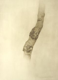 Marzio Tamer, Trunk, watercolor, cm 126 x 96