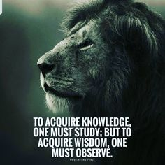 deep motivational quotes motivational quotes for students motivational quotes for work motivational Motivational Quotes For Students, Great Quotes, Encouragement Quotes, Wisdom Quotes, Wisdom Scripture, Poetry Quotes, Quotable Quotes, True Quotes, Facts Of Life Quotes