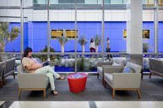 """The Los Angeles County Arts Commission helped bring $1 million in artwork to the hospital campus. The """"Azul Healing Garden"""" by Dan Corson is visible from the first-floor waiting area and features blue-colored mulch, plants, and lighting to create a calming courtyard setting. Photo: Photographs by David Wakely"""