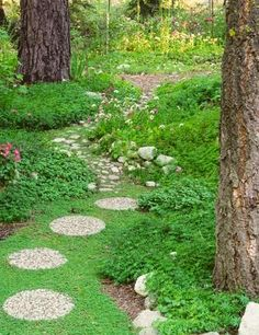 Large, round pavers lead to a path of smaller fieldstones.