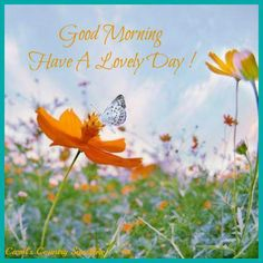 Good morning  have a lovely day!!