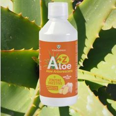 Il nostro succo Aloe + Zenzero ( A+Z), dal gusto molto piacevole grazie all'Olio Essenziale di Limone Biologico, regola la motilità… Aloe, Essential Oils, Personal Care, Beauty, Instagram, Vitamin C, Self Care, Personal Hygiene, Beauty Illustration
