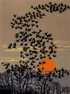 Robert Gillmor is an ornithologist, artist, author and editor