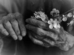 favourite loving hands by Konstantin-V. Hand Photography, Creative Photography, Portrait Photography, Photo Main, Show Of Hands, Old Hands, Black N White Images, Beautiful Hands, Black And White Photography