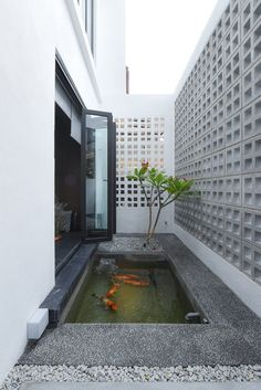 37 Small Fish Pond Ideas To Refresh Your Outdoor Exterior Design, Interior And Exterior, Interior Garden, Facade Design, Ideas De Piscina, Small Fish Pond, Dressing Design, Terrace Design, Ponds Backyard
