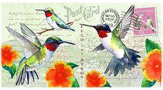 Hummingbird Vintage Series Postcard 14oz Coffee Mug Wrap-Around View