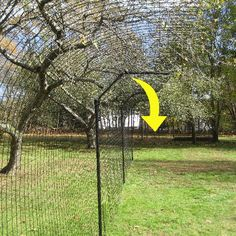 100' Free-Standing Cat Enclosure System