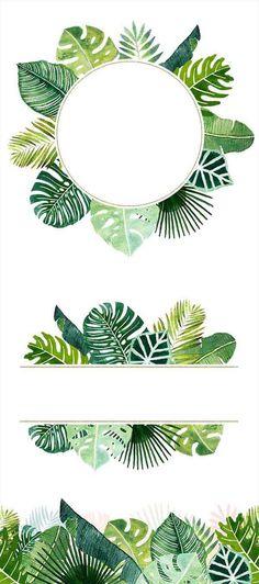 Cliparts haute qualité de feuilles tropicales peintes à Motif Jungle, Motif Tropical, Tropical Plants, Tropical Frames, Leaf Clipart, Plant Drawing, Tropical Forest, Motif Floral, Flower Wallpaper