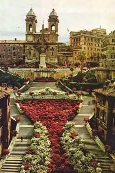 The Spanish Steps, Rome.Rome is 4 hours from Pisa which is one hour from Florence. Ryanair flights to Pisa and Rome Places Around The World, Oh The Places You'll Go, Travel Around The World, Places To Travel, Places To Visit, Around The Worlds, Travel Things, Travel Stuff, Places Ive Been