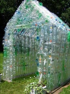 bottle greenhouse - I have been trying to figure out what to do with my Perrier bottles. I think they will be used for the new chicken coop!