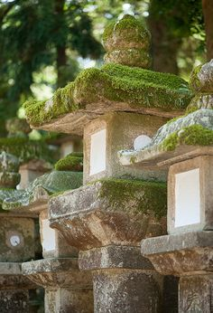 Stone lanterns at Kasuga Shrine #japan #nara - get a closer look at these right here in Roji-en! #morikami