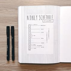 Sandy @abulletandsomelines's Bullet Journal daily schedule
