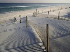new jersey shore beach - Google Search
