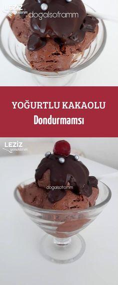 Yoğurtlu Kakaolu Dondurmamsı