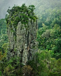 The Pinnacle near Graskop, Mpumalanga, South Africa Places To Travel, Places To See, Travel Destinations, South Afrika, Africa Travel, Out Of Africa, Countries Of The World, Amazing Nature, Tourism