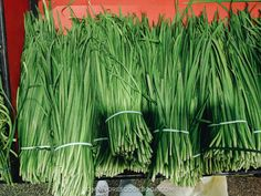 An introduction to Chinese greens, how they look like, how to store, how to prep and cook with them, and related recipes. Vegetarian Recepies, Healthy Recipes, Vegetable Base Recipe, Chinese Vegetables, Chinese Greens, Base Foods, Asparagus, Herbs, Potatoes