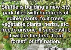"""""""Seattle is building a new city park filled with hundreds of edible plants..."""""""