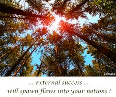 ... external #success ... will spawn #flaws into your #notions !