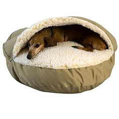 Snoozer Cozy Cave Bed    Give your pooch as safe haven with this Snoozer Cozy Cave Bed! This bed mimics a den and will see your pooch through whatever it is your doggie desires; be it a quick nap or a place to chew toys, this is a super sweet accessory your pup can call his own.