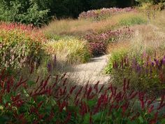 Where garden wildlife meets garden design - inspiration from one of Piet Oudolf's beautiful beds #homesfornature