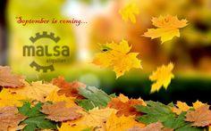 #Septemberiscoming #otoño