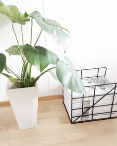 Keep your magazines organized in this decorative holder produced in powder coated metal. Might also come in handy for keeping your work desk clean from piles of paper.  https://www.fermliving.com/webshop/shop/office/magazine-holders/square-magazine-holder-1.aspx