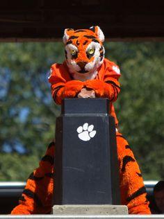 Tiger Traditions: Howard's Rock