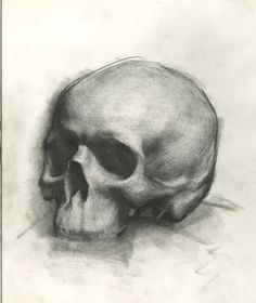 Skull Study, Graphite on Paper Easy Skull Drawings, Skeleton Drawings, Still Life Sketch, Still Life Drawing, Anatomy Sketches, Drawing Sketches, Skull Reference, Anatomy Reference, Skull Sketch