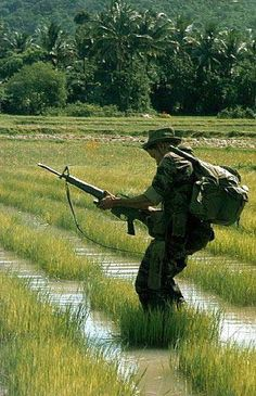 25th Infantry Division Tropic Lightning Vietnam War-Please tell me that his M-16 isn't jammed again!!! due to wrong propellant mixtures again!!!!!!  wg.