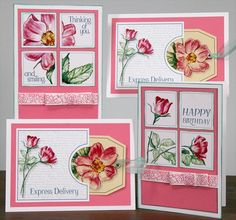 Wild Rose Greetings to Go cards | 2016 #clubscrap Retreat