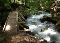 Visit Rainier Goat Falls