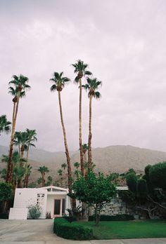 Mid Century Modern Pink Door Palm Springs