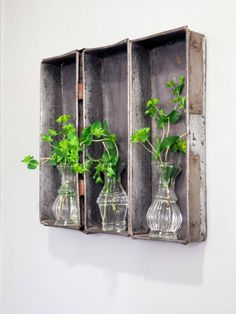 Old Metal Trays with Little Glass Vases Inside