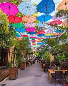 Nicosia, Cyprus Photo by Don't forget to like, comment and tag other nature lovers Umbrella Street, Umbrella Art, Beautiful Streets, Beautiful Places, Beautiful Pictures, Amazing Places, Best Summer Holiday Destinations, Puerto Rican Culture, Picture Places
